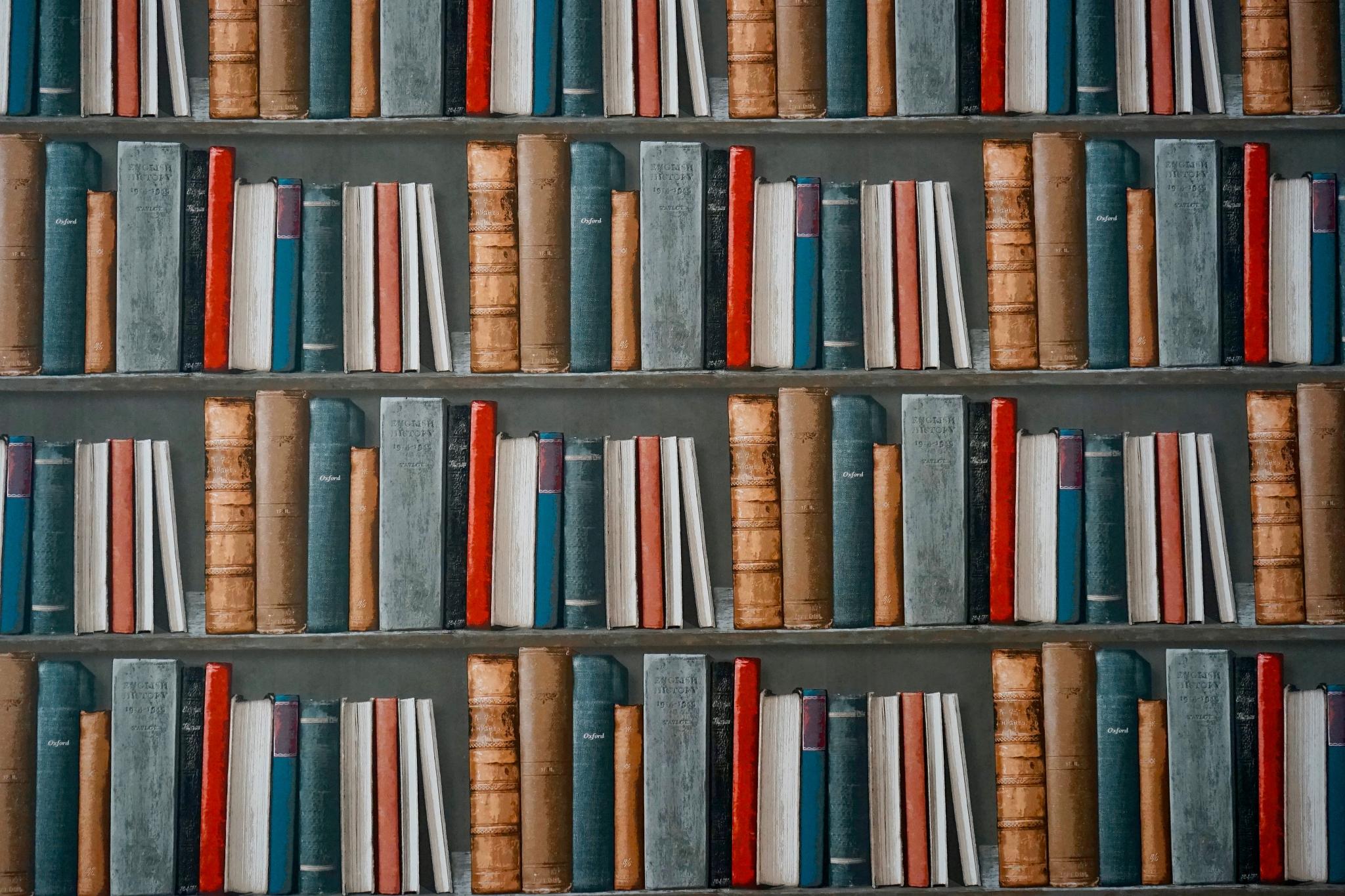 shalom101 book shelf and books