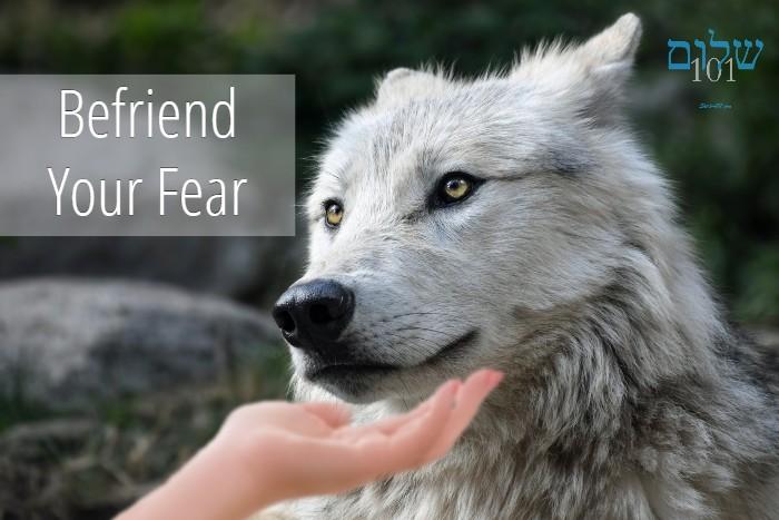 Shalom101 befriend your fear